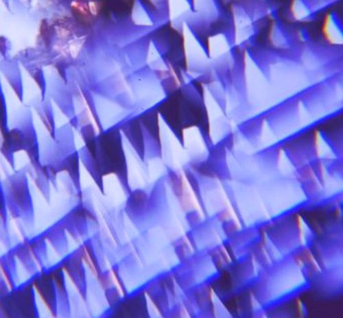 Jublet-Glitter-RadioDAISIE2